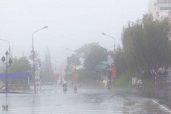 Mưa Đà Lạt - hãy quan tâm đến thời tiết khi chụp ảnh cưới